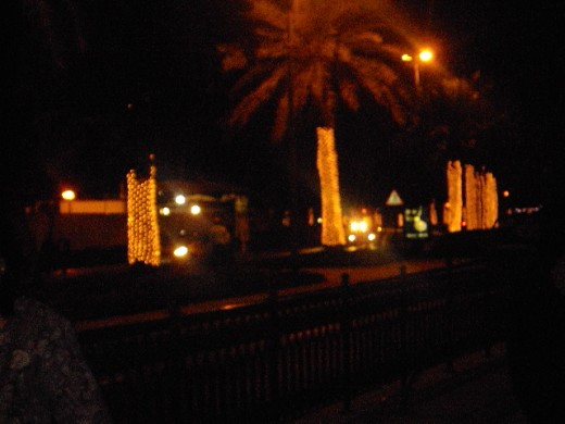 Light decorations on road side