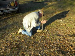 Important Survival Plants  : Adam's Needle or How To Build A Fire By Rubbing Two Sticks together