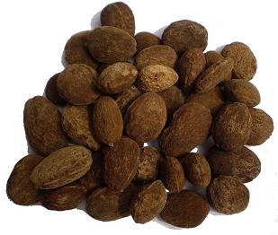 Irvingia seeds