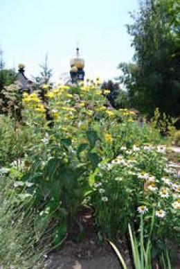Herb garden near Brnbach church, with over 200 herbs, teas and medicinal herbs.