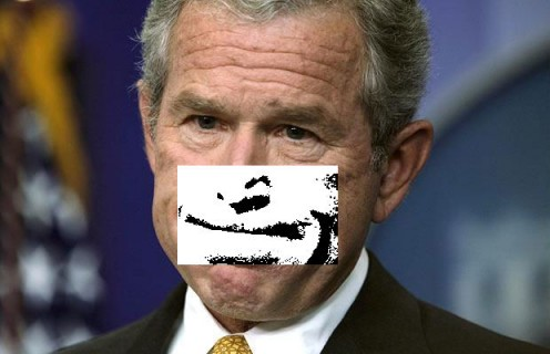 Bush expressionBIC 2011