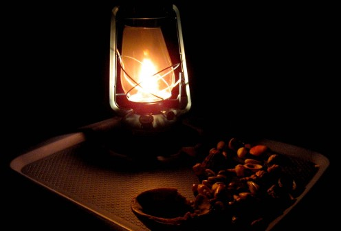 Shells by lamplight