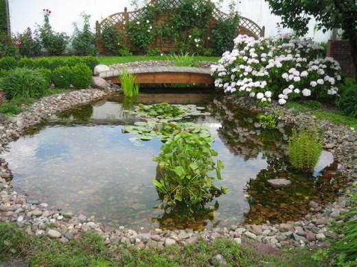 How to build a backyard garden pond for Build your own garden pond