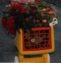 my daughter loved to push her cart around and fill it with cut flowers