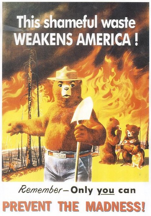 Many homes have caught fire in California because of laziness or arson.  Smokey the bear has been fighting that a long time.   The loss of massive forests and wildlife is so sad.