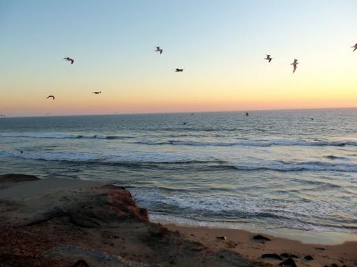 - Huntington Beach Sunset  -
