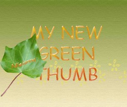 My Greener Thumb