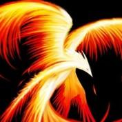 Kaabi profile image