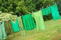 "Companies Going Green? Or ""Greenwashing"""