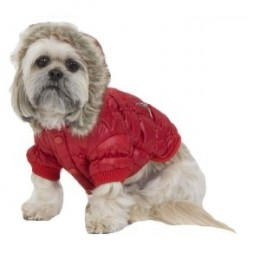 Red Quilted Small Dog Fashion Parka