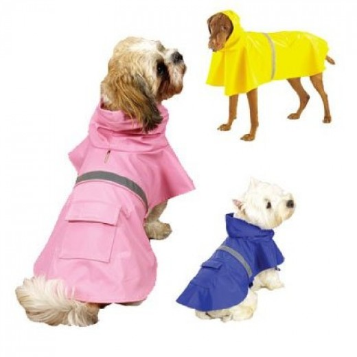 Fashion forward dog raincoats