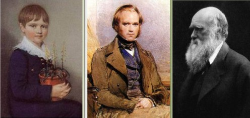Photos / Images out of copyright - public domain http://en.wikipedia.org/wiki/Charles_Darwin