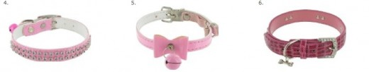 Fashionable Small Dog Collars