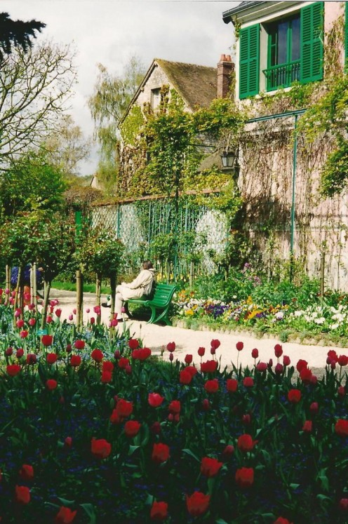 A rose bed outside Monet's home