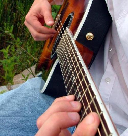 Steel-stringed Acoustic Guitar