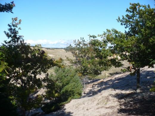 Hiking along Ridge Trail, Ludington State Park
