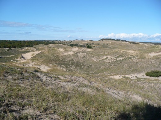 Sand dunes on Ridge Trail, Ludington State Park