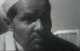 Vladimir Demikhov