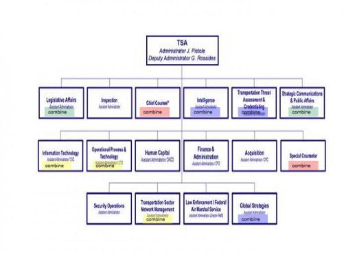 TSA Org Chart