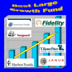 Top 10 Best Large Cap Growth Stock Mutual Fund: Domestic Equity Funds Series