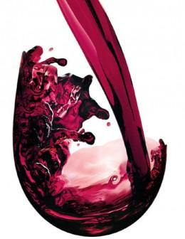 Stemless Wine Tumbler
