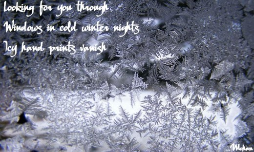 Haiga: Winter Nights