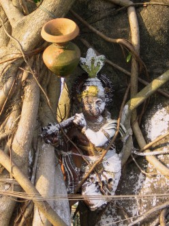 Lord Krsna watches people walking past as He nests on the trunk of a banyan tree.
