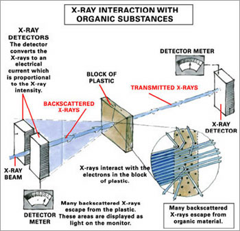 The basic principle of backscatter scanning is to bounce ionizing radiation off the body under ones clothing in a bid to reveal hidden objects like potential explosives. Unfortunately, the radiation dose also harms living tissue.