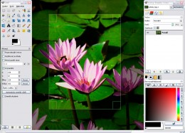GIMP is good software to give professional touches to Images. It comes with GNU General Public License.