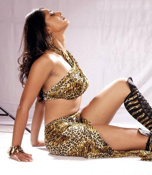 Anushka made her acting debut in 2005 opposite Akkineni Nagarjunan in the film Super.