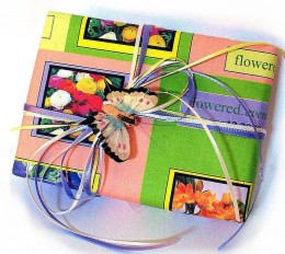 Wrapping paper from pictures taken off the internet, wrapped with a little butterfly.