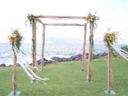 This wedding site uses both the chuppah with cllusters of flowers and plant stands.