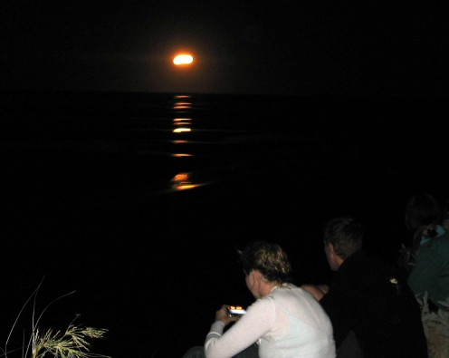 The phenomenon known as the Stairway to the Moon is moonlight (actually sunlight reflecting off the moon but I'm nitpicking) reflecting off the sand flats at low tide, only occurs once in a blue moon.