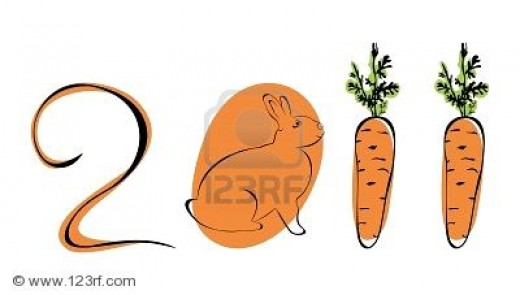 RABBIT as Chinese New Year 2011 symbol