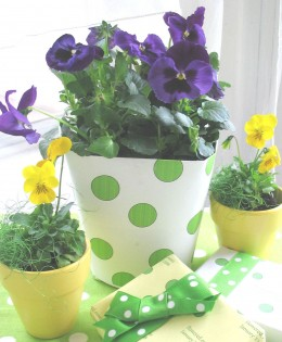 Plastic food container covered with polka dot paper, for a pansy garden theme.