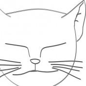 firman afandi profile image