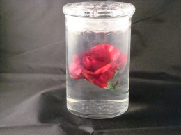 "Water beads with ""floating"" rose and black background"