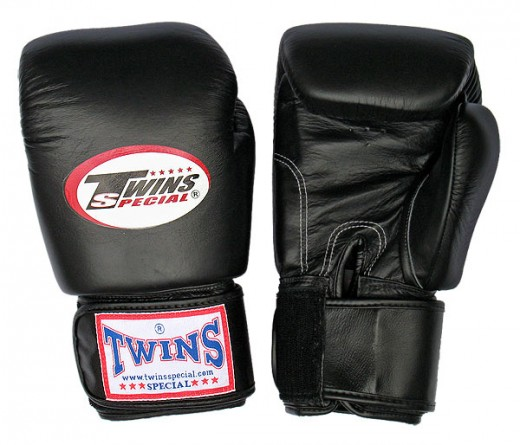 Twins Muay Thai Gloves