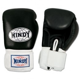 Windy Muay Thai Gloves