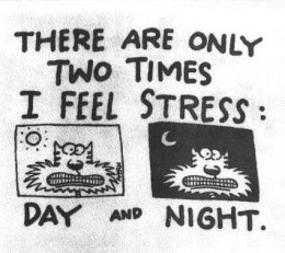Stress has become lifestyle for some people