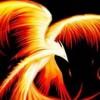 Nu Phoenix Rising profile image