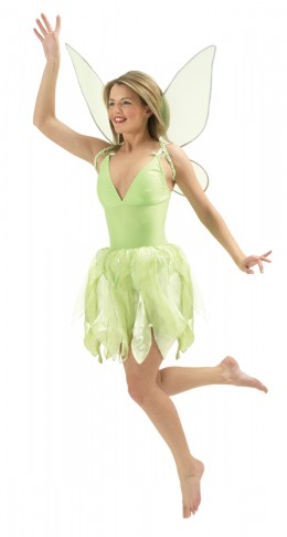 Tinker Bell Fancy Dress