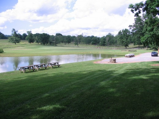Rolling hills and grazing cattle surround the lake and wedding site at Taylor Ranch.