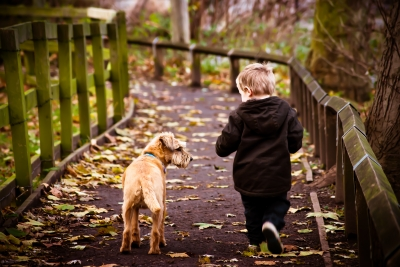 http://www.freedigitalphotos.net/images/Children_g112-Child_With_Dog_p23413.html