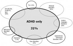 My ADHD Problems and How I Solved Them