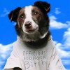 Sammy Davis Jnr profile image