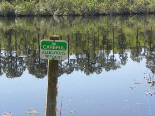 Sign warning campers of gators in the lake.