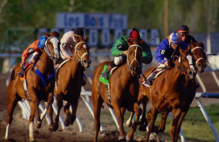 Most of the time the winner comes from the first eight in the betting.