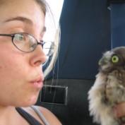 stacebird profile image