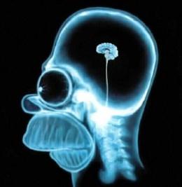 Simpson Brain